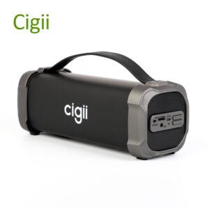اسپیکر بلوتوث قابل حمل Cigii Super loud Speaker|F51